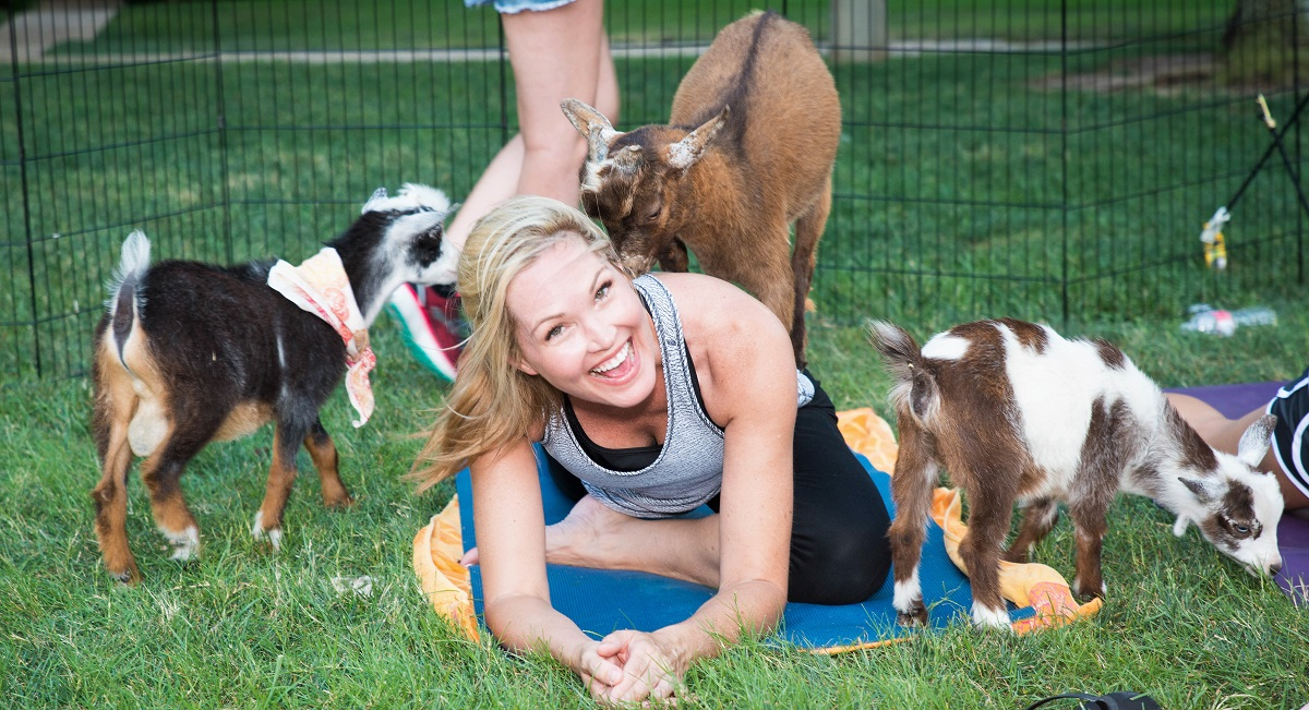 Happy Goat Yoga Dfwchild