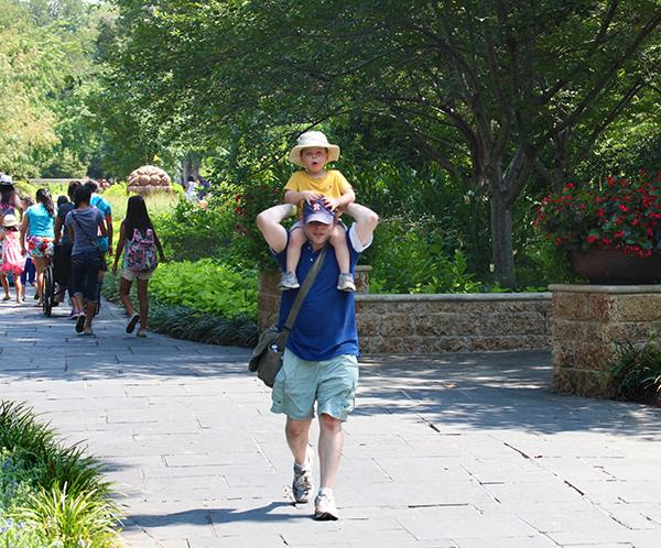 Father's Day Weekend at Dallas Arboretum