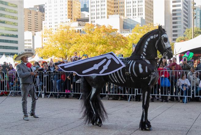 Dallas Día de los Muertos Parade