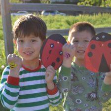 Elm Fork Ladybug Release