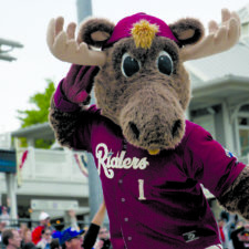 Pro sports teams in DFW; Frisco Rough Riders mascot
