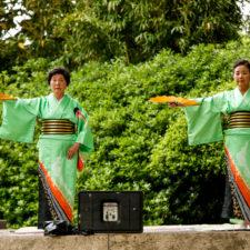 Japanese Spring Festival at Fort Worth Botanic Garden
