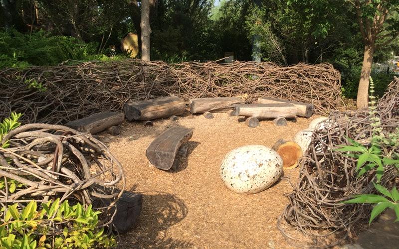 Garden STEM at Home