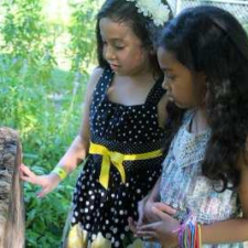 Garden STEM Lessons with the Arboretum