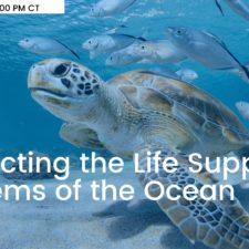 EarthxOcean: World Oceans Week