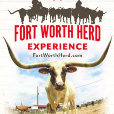 Fort Worth Herd Experience