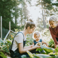 Mom and daughters gardening in their backyard garden