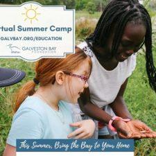 Galveston Bay Foundation Virtual Summer Camps
