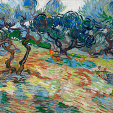 Van Gogh and the Olive Trees