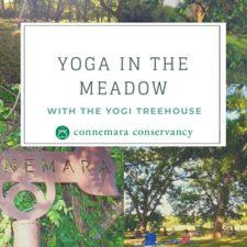 Yoga in the Meadow, Connemara Meadow Nature