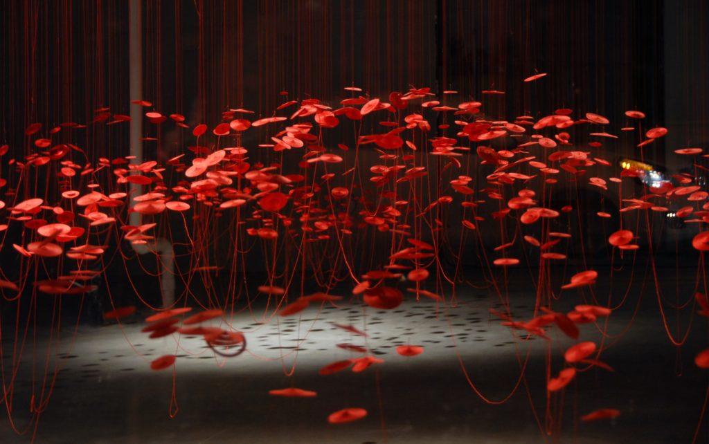 Installation view of Lure by Beili Liu, Photo credit: Beili Liu Studio