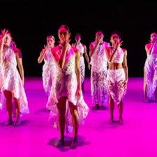 ROOTED: Envisage Dance Installations