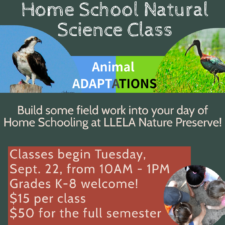 LLELA Home School Natural Science