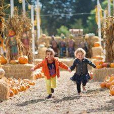 Fall Family Festival at Bingham House