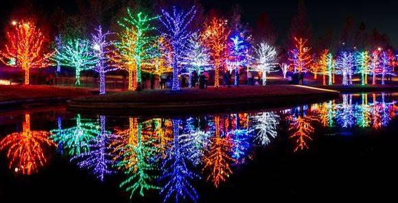 Vitruvian Lights