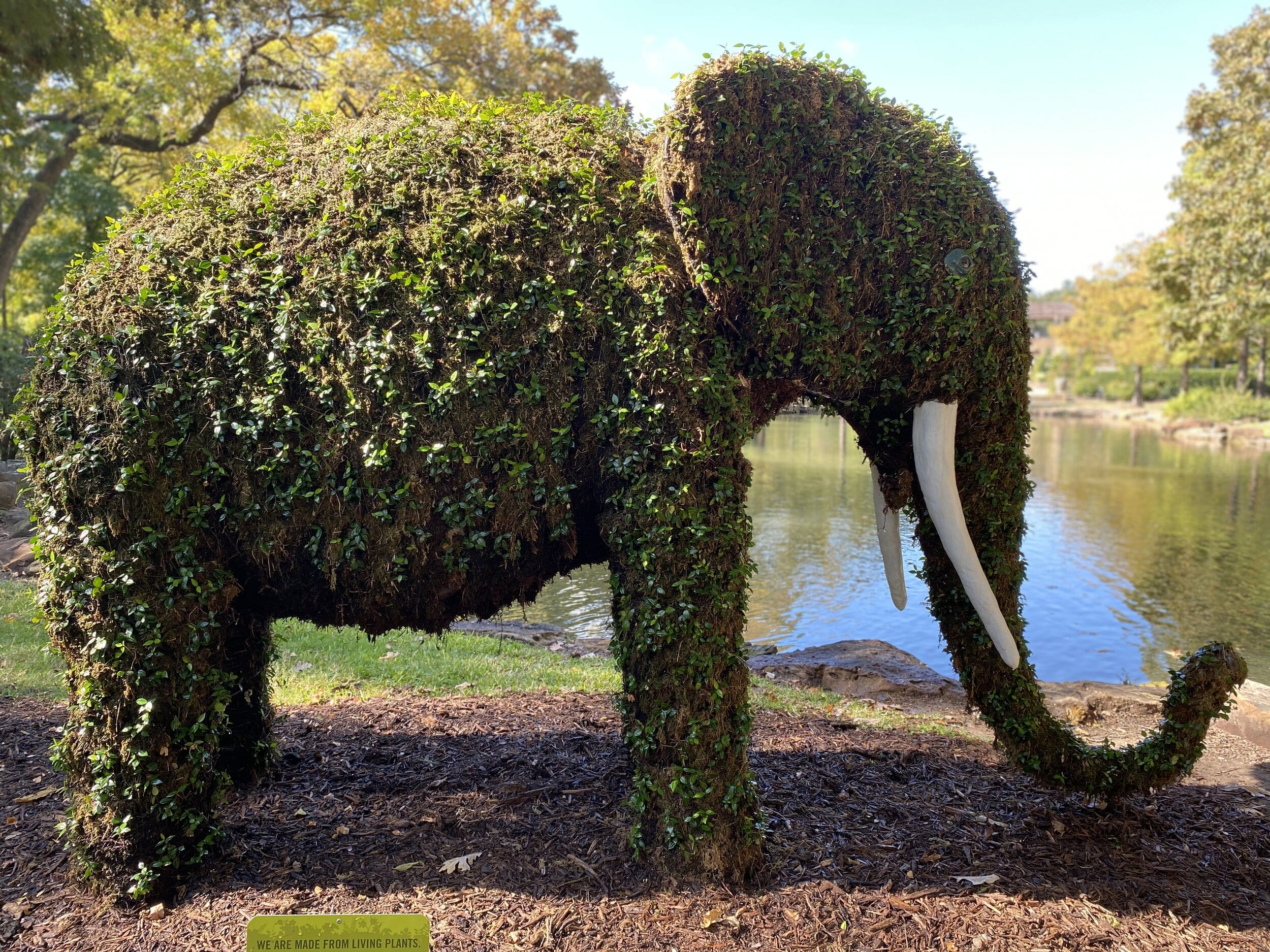Topiaries in the Garden, Fort Worth Botanic Garden
