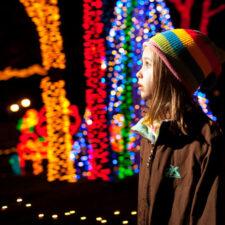 Christmas Lights, Photo courtesy of Mark Bumgarner