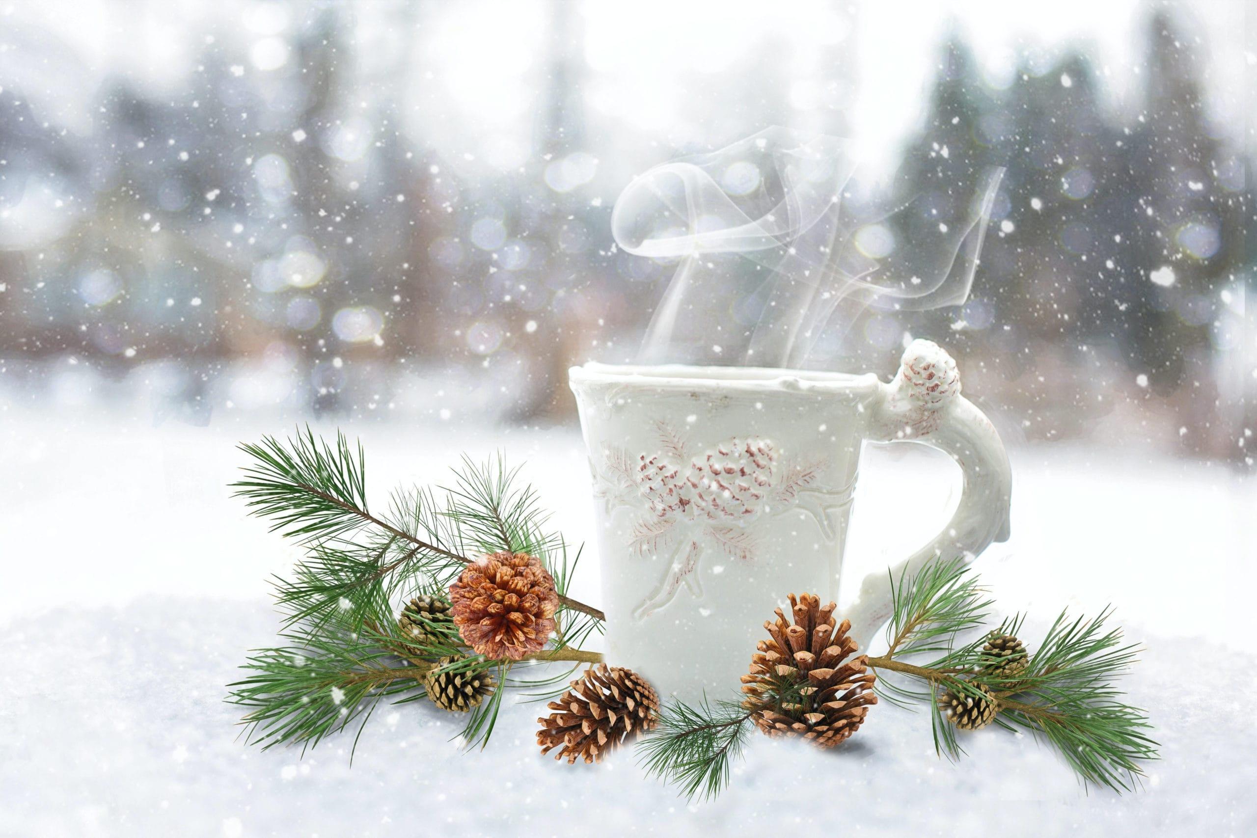 Winter Wonderland Afternoon Tea, Fort Worth Botanic Garden