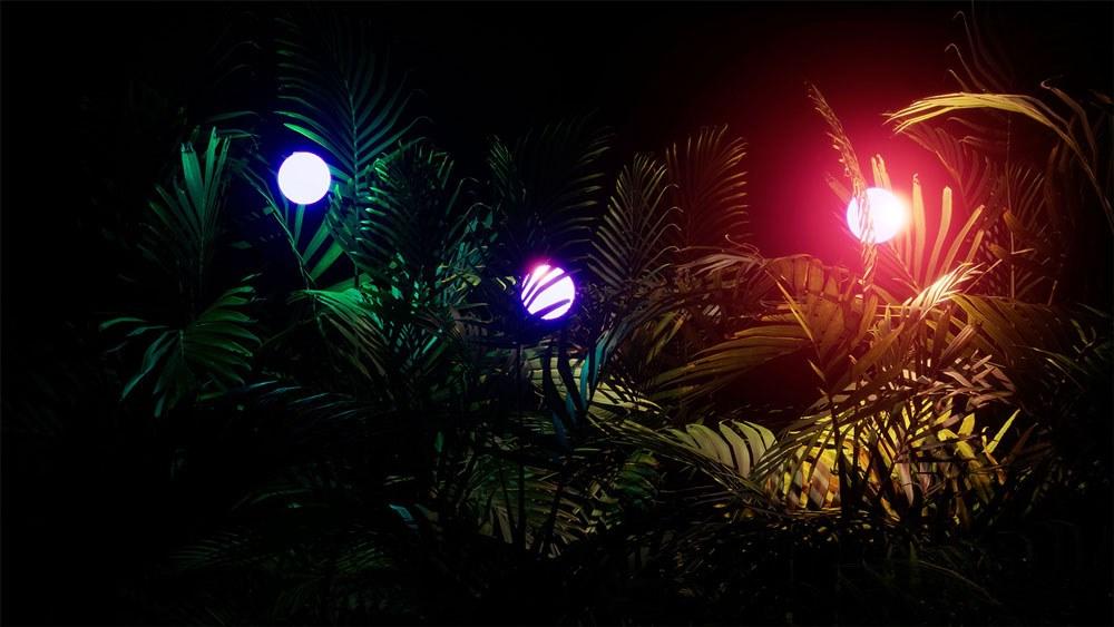Glow Forest exhibit at Oak Cliff Cultural Center