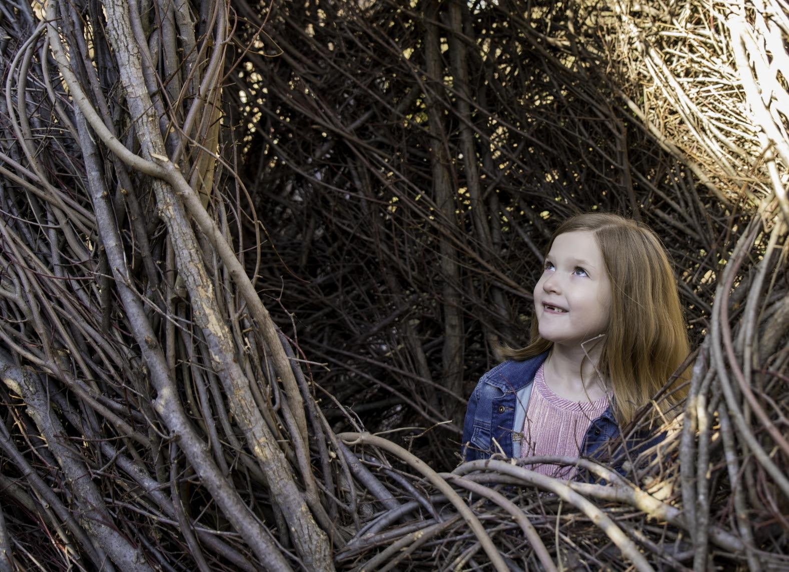 Stickwork exhibit by Patrick Dougherty, Fort Worth Botanic Garden