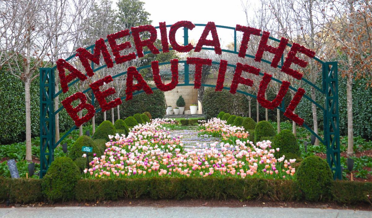 Dallas Blooms, America the Beautiful