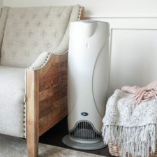 air purifier editors love
