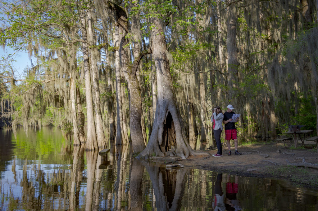 caddo lake state parks