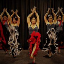 Paella y Pasion, Flamenco Fever