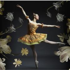 Ballet al Fresco, Texas Ballet Theater