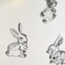 Sid Richardson Museum, Virtual Teen Workshop: Drawing Animals