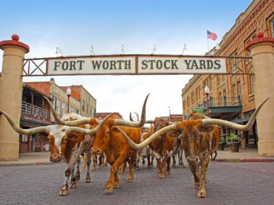 fort worth stockyards cowboy experience