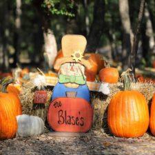 Pumpkin Patch at Blase Family Farm