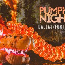 Pumpkin Nights dragon